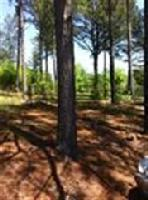 lot 2 Carriage Trace, Seneca, SC 29678 Property Photo
