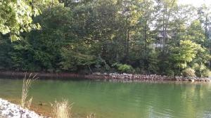 Lot 94 The Summit, Seneca, SC 29672 Property Photo