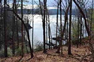 Lot 90 Dwarf Iris Way, Sunset, SC 29685 Property Photo