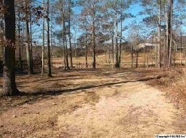 Lot 17 LAKESHORE LOT 17, LEESBURG, AL 35983 Property Photo