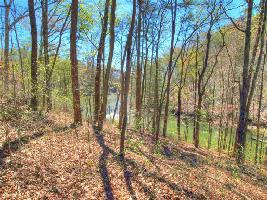 Lot 25 Sawmill Cove  25, Rockwood, TN 37854 Property Photos