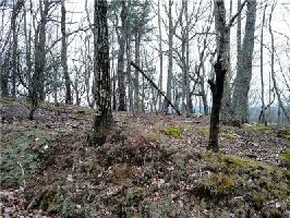 2613 Stone Ridge Court Lot 2613, Jasper, GA 30143 Property Photo