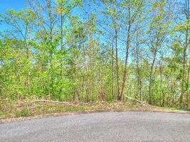Lot 43 Eerie Point  43, Rockwood, TN 37854 Property Photo