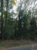 Lot 179 Pine Trail Drive, Flint, TX 75762 Property Photo