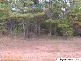 CO RD 4315 Lot 1, WEDOWEE, AL 36278 Property Photo