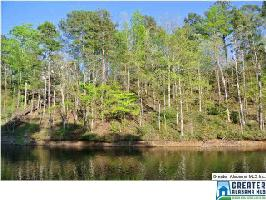 Lot 5 CO RD 816, WEDOWEE, AL 36278 Property Photo