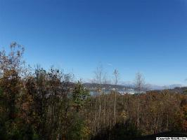 WILDWOOD ROAD LOT 7, GUNTERSVILLE, AL 35976 Property Photo