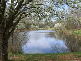 Lot 9 139 Jami-wind Court , Mooresville, NC 28115 Property Photo