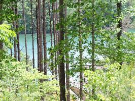 Lot 26 Cross Lake Trail, Six Mile, SC 29682 Property Photo
