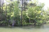 Lot 7 Ph 2 Amber Dr, Jacksons Gap, AL 36861 - Image 1: Lot 7 Phase 2 shoreline