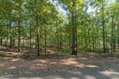 Lot 46 Lakeview Dr, Eclectic, AL 36027 - Image 1: LakeviewLot46-2