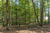 Lot 15 Lakeview Dr, Eclectic, AL 36027 - Image 1: LakeviewLot15-5