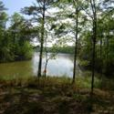 10.82Acres Hideaway Lane, Tallassee, AL 36078 - Image 1: Yates Lake Point