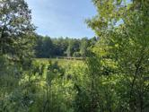 Murphy Dam Rd, Dadeville, AL 36853 - Image 1: View of dam from hill