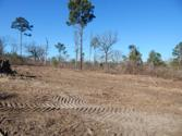 TBD LOT 112 RAINTREE LAKES CIRCLE, BIG SANDY, TX 75755 - Image 1