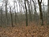 0 Clare Blk 2, Lot 33, New Haven, MO 63068 - Image 1
