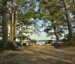 Milarch rd (Parcel A), Bear Lake, MI 49614 - Image 1: 005