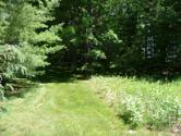 10910 Boxwood Drive, Canadian Lakes, MI 49346 - Image 1: West Side of Lot