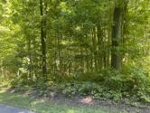 Long Lake Road, Cassopolis, MI 49031 - Image 1: Long Lake Dr