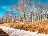 9361 St. Ives Drive, Canadian Lakes, MI 49346 - Image 1: 1. Lot view