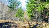 1.17 Acres Maidens Road, Onekama, MI 49675 - Image 1: Portage Lake & Lake Michigan Views!