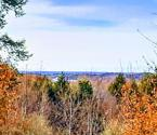 Lot 137 Horizon Ridge, Onekama, MI 49675 - Image 1: 2 Lake Views