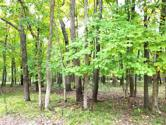 Lot 263/264 Winter Haven Drive, Varna, IL 61375 - Image 1