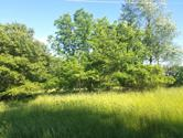 Lot 1348 Green Valley Drive, Varna, IL 61375 - Image 1