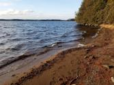 Lots 7-11 Penninsula Road, Marion Twp, ME 04628 - Image 1: 1386 BEACH OUT 1