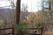 1 Holiday Haven Road, Smithville, TN 37166 - Image 1