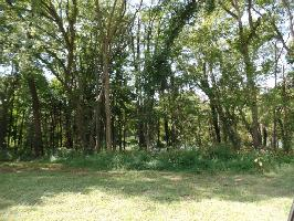 0 Sharp Springs Road Lot 1, Winchester, TN 37398 Property Photos