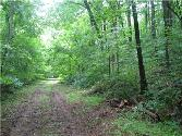 0 Lost Creek Rd, Lynchburg, TN 37352 - Image 1
