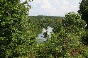 0 Grandview Lake Rd Lots 8&9, Estill Springs, TN 37330 Property Photo