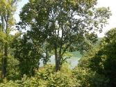 862 Rigsby Rd, Smithville, TN 37166 - Image 1