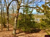 Off JOHNS DRIVE, Lakeview, AR 72642 - Image 1