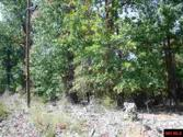 0 PROMISE LAND ROAD, Mountain Home, AR 72653 - Image 1