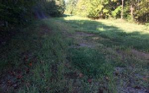 TBD HIWASSEE LAKESIDE DR, Murphy, NC 28906 Property Photo