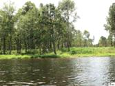 306 DOCTOR'S POINT DRIVE, Chatham, LA 71226 - Image 1