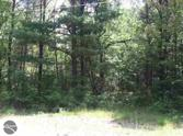 0 Gopher Trail, Alger, MI 48610 - Image 1