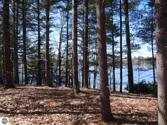 LOT C Betsie River Road, Interlochen, MI 49643 - Image 1