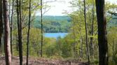 Lot 10 Vistas of Walloon Lot 10, Walloon Lake, MI 49770 - Image 1