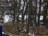 22070 Iden Avenue N, Forest Lake, MN 55025 - Image 1