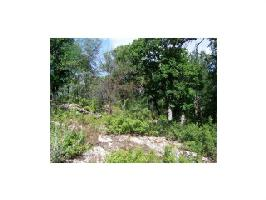 County Rd 600 Lot 49, Brownwood, TX 76801 Property Photo