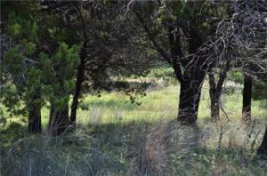 130 County Road 1524 Lot 130 Property Photo