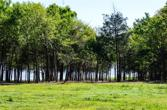 5796 Fm 2947, Lone Oak, TX 75453 - Image 1: Great lakefront views with mature trees