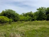 Lot 7 Jaybird Road, Bowie, TX 76230 - Image 1