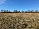 Lot 5 County Road 3419, Emory, TX 75440 - Image 1