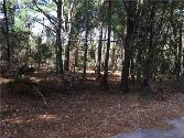 0 Briar Valley Dr, Murchison, TX 75778 - Image 1