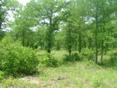 Lot 427 L427 Sunset Bay Pointe Court, Chico, TX 76431 - Image 1