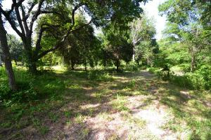 111 Griffith Bend Lot 208, Payne Springs, TX 75147 Property Photos